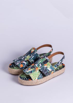 Iris-Tropical